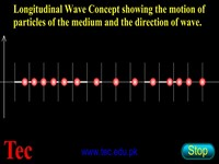Particles in Longitudinal Waves